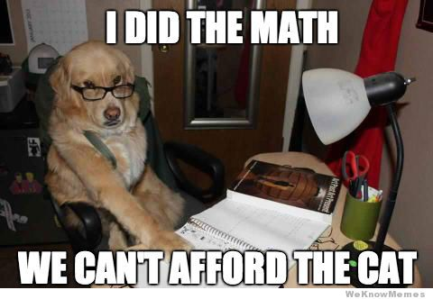 financial-dog-meme.jpg